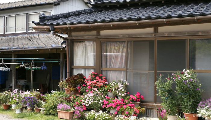 民宿三浜 撮影